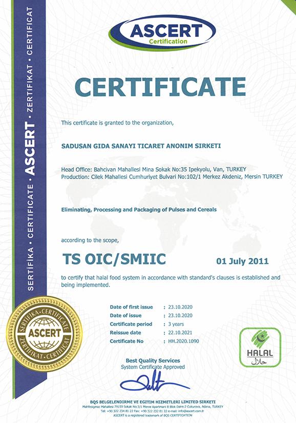 TS OIC/SMIIC